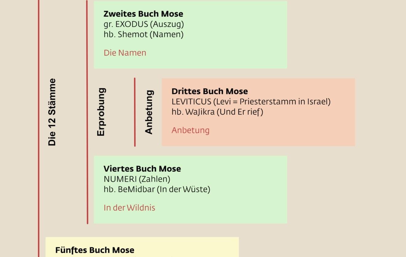 Thorah – eine schematische Übersicht