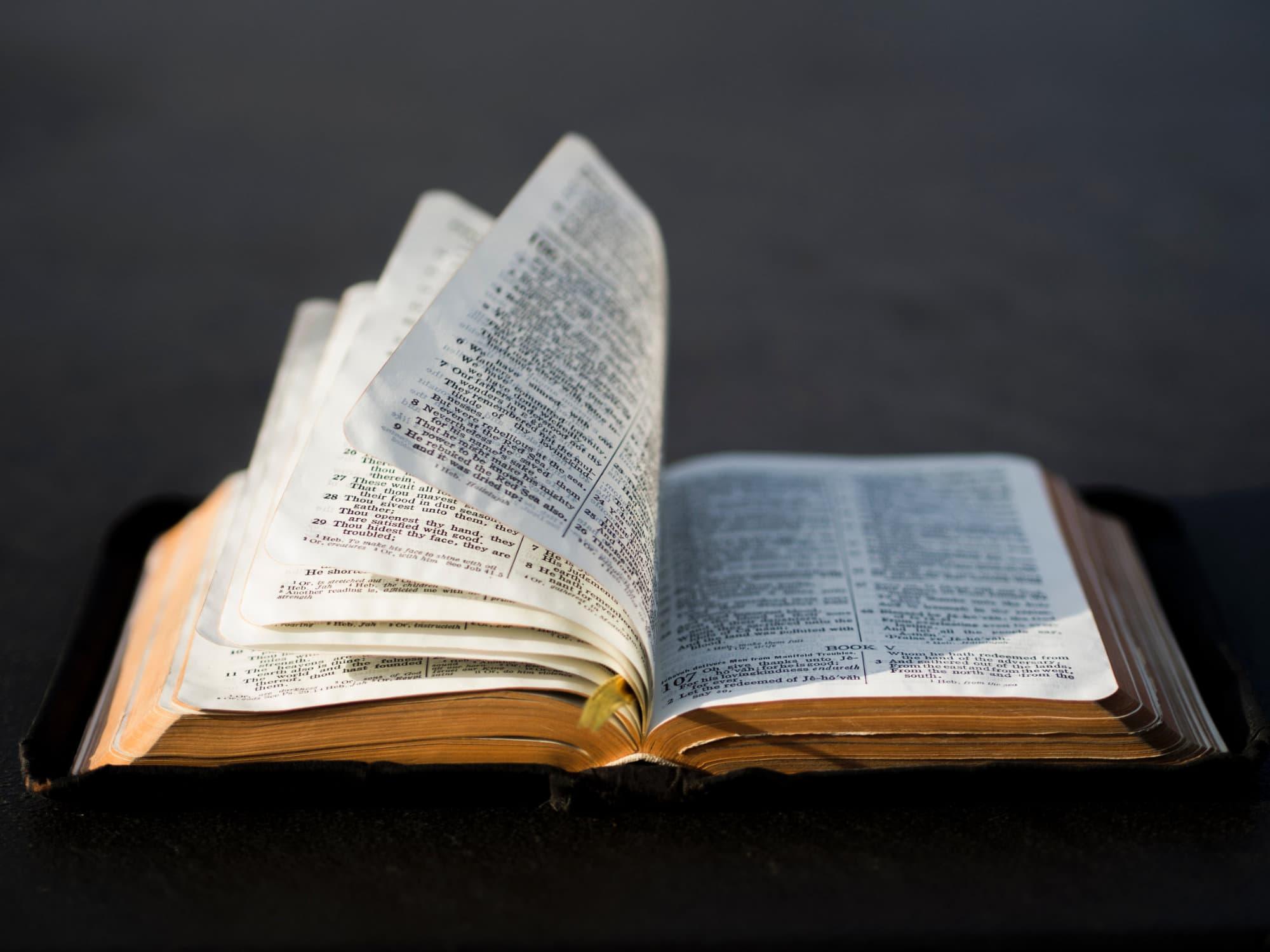Bibelübersetzungen