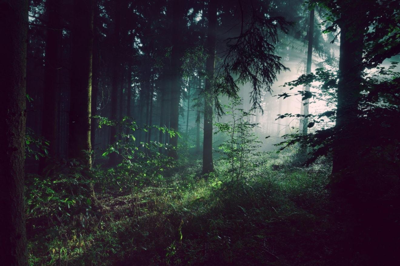 Innerer Kampf im Alltag –wie bewältigt man die?