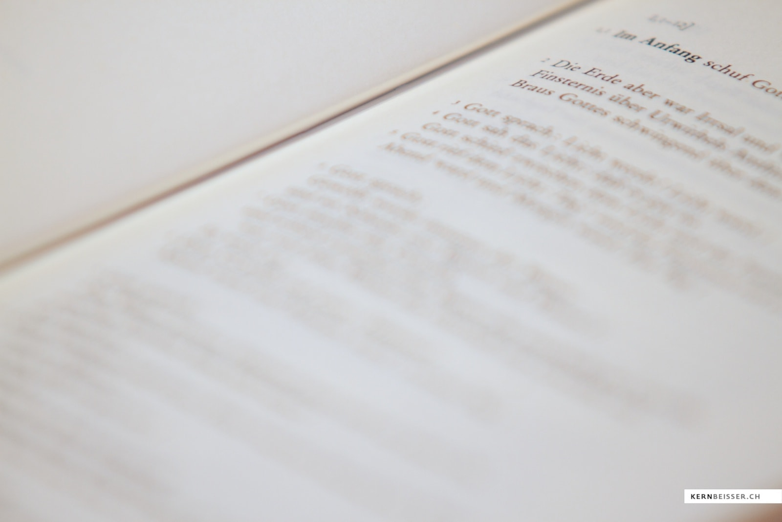 Bibelauslegung: Text im Kontext deuten